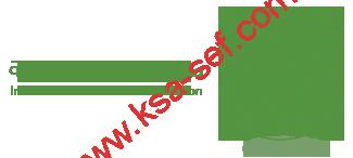 Logo-معهد الإدارة العامة