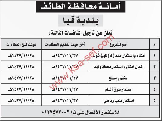 منافسات بأمانة محافظة الطائف