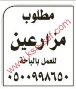 -ص13مطلوب مزارعين للعمل بالباحة