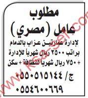 مطلوب عامل مصري