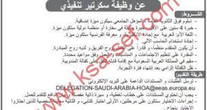 مطلوب سكرتير تنفيذي لمندوبية الاتحاد الأوروبي لدى المملكة العربية السعودية